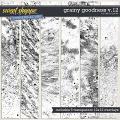 Grainy Goodness v.12 by Erica Zane