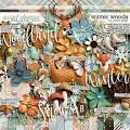 Winter Woods by Studio Flergs