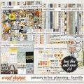 January Is For: Planning Bundle by Studio Basic and Little Butterfly