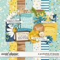 A Pocket Full of Daisies by Kristin Cronin-Barrow