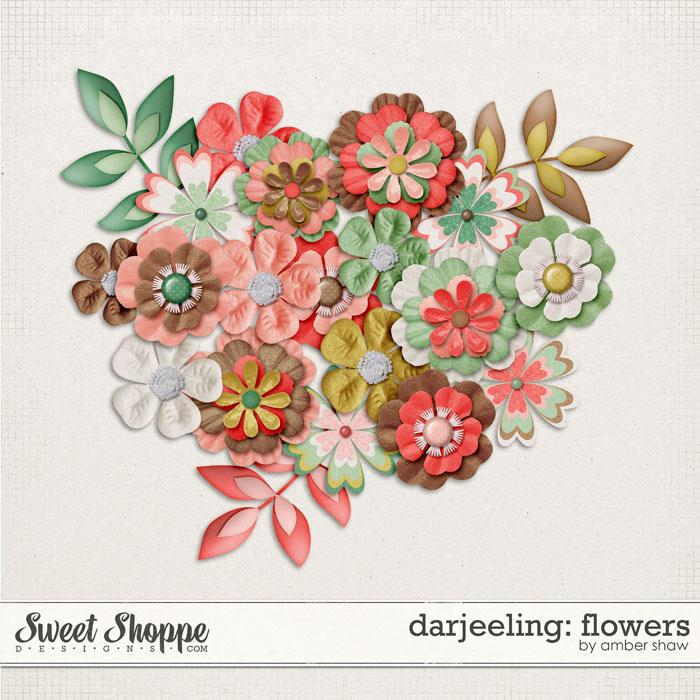 Darjeeling: Flowers by Amber Shaw