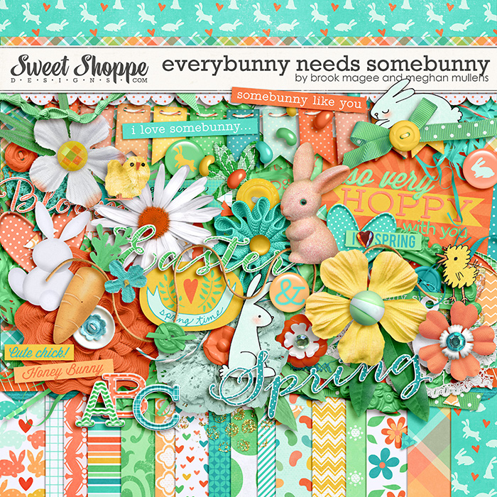 Everybunny Needs Somebunny by Brook Magee & Meghan Mullens