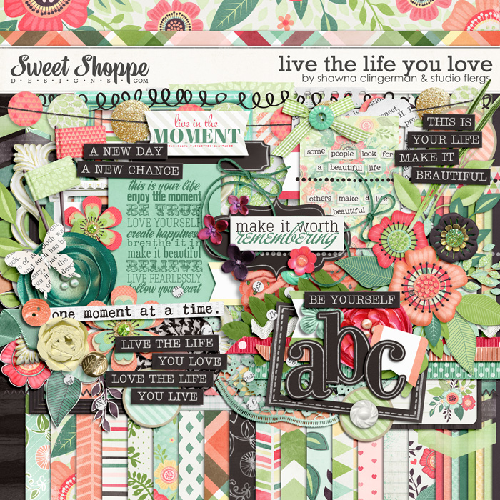 Live the Life You Love by Shawna Clingerman & Studio Flergs