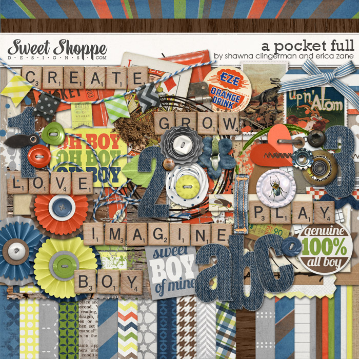 A Pocket Full by Shawna Clingerman & Erica Zane