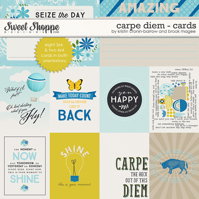 Carpe Diem - Cards by Kristin Cronin-Barrow and Brook Magee