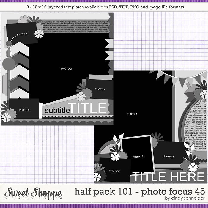 Cindy's Layered Templates - Half Pack 101: Photo Focus 45 by Cindy Schneider