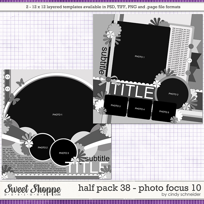 Cindy's Layered Templates - Half Pack 38: Photo Focus 10 by Cindy Schneider