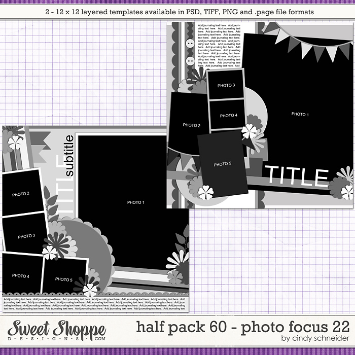 Cindy's Layered Templates - Half Pack 60: Photo Focus 22 by Cindy Schneider