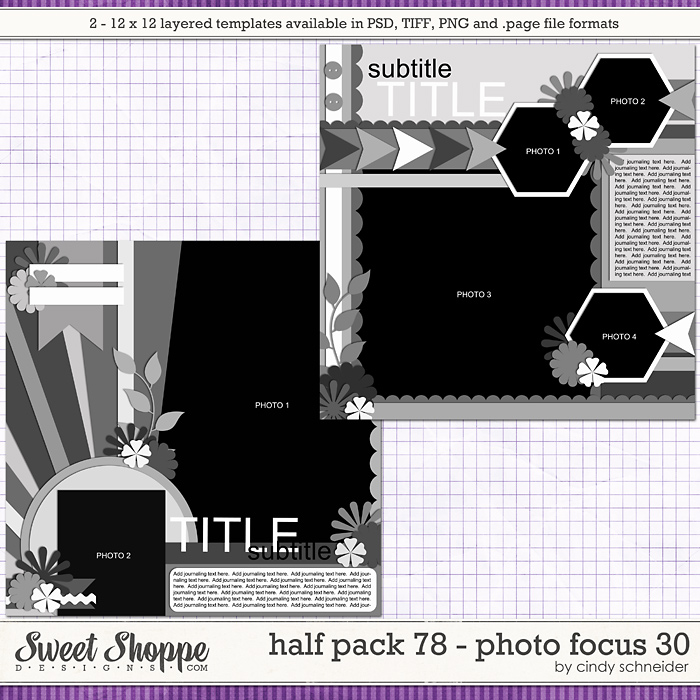 Cindy's Layered Templates - Half Pack 78: Photo Focus 30 by Cindy Schneider