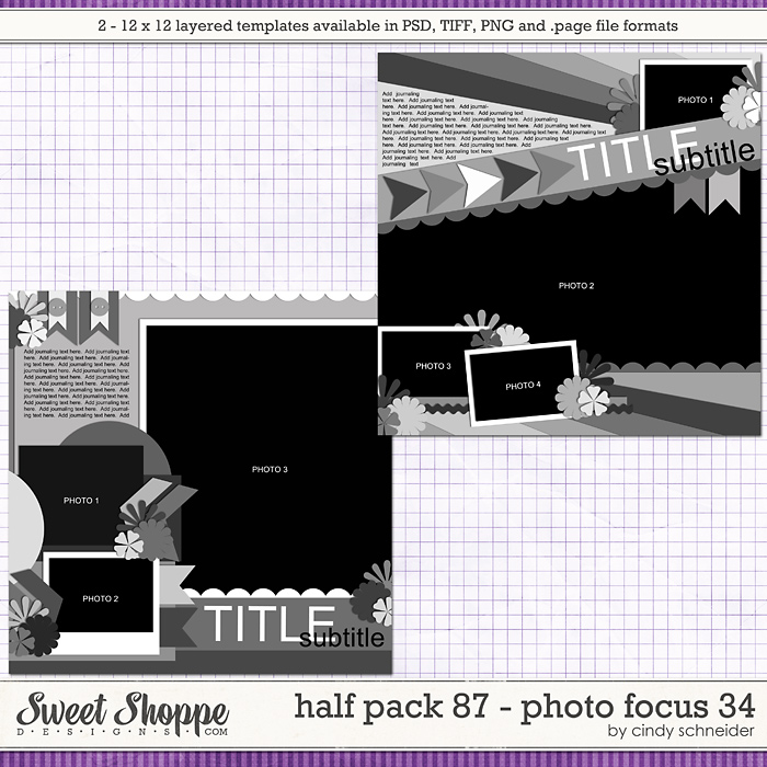 Cindy's Layered Templates - Half Pack 87: Photo Focus 34 by Cindy Schneider