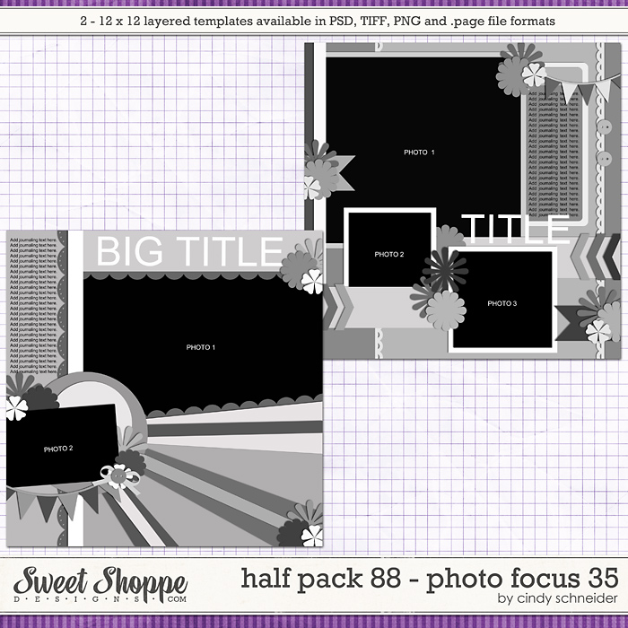 Cindy's Layered Templates - Half Pack 88: Photo Focus 35 by Cindy Schneider