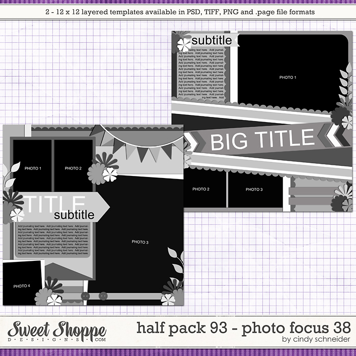 Cindy's Layered Templates: Half Pack 93 - Photo Focus 38 by Cindy Schneider