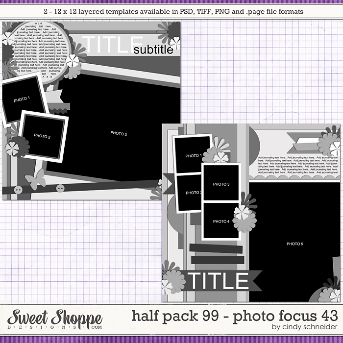 Cindy's Layered Templates - Half Pack 99: Photo Focus 43 by Cindy Schneider