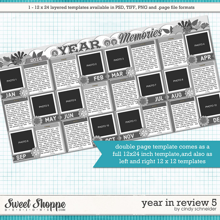 Cindy's Layered Templates - Year in Review 5 by Cindy Schneider
