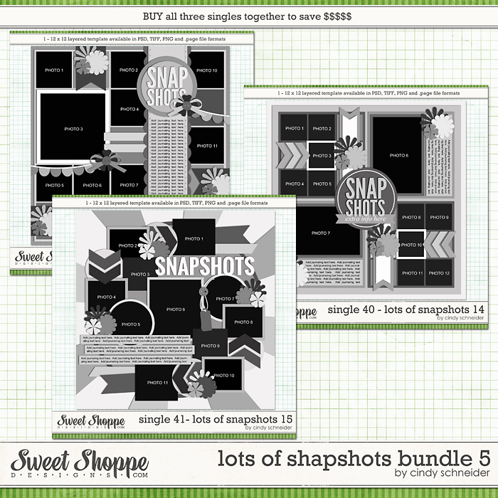 Cindy's Layered Templates - Lots of Snapshots Bundle 5 by Cindy Schneider