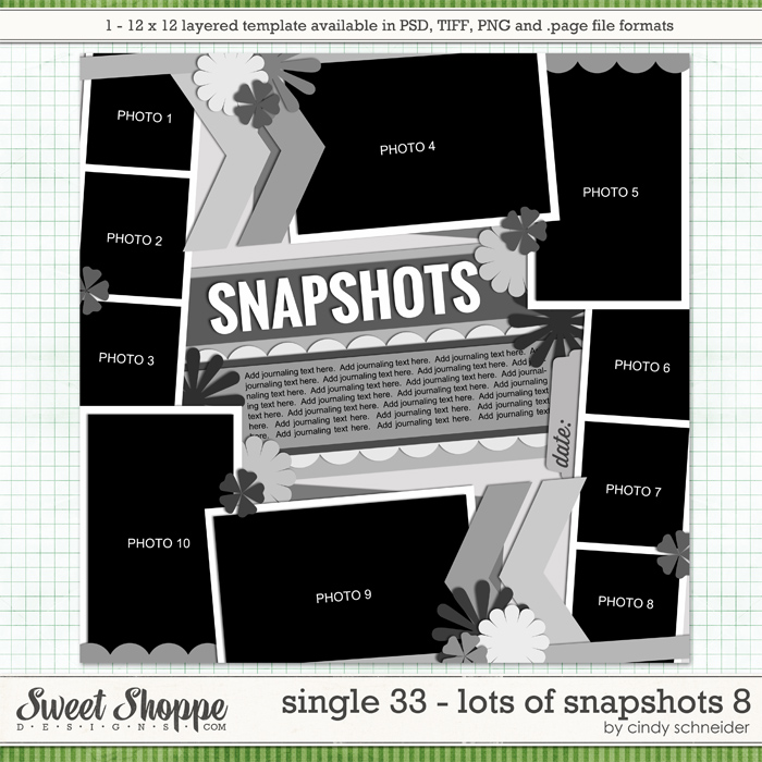 Cindy's Layered Templates - Single 33: Lots of Snapshots 8 by Cindy Schneider