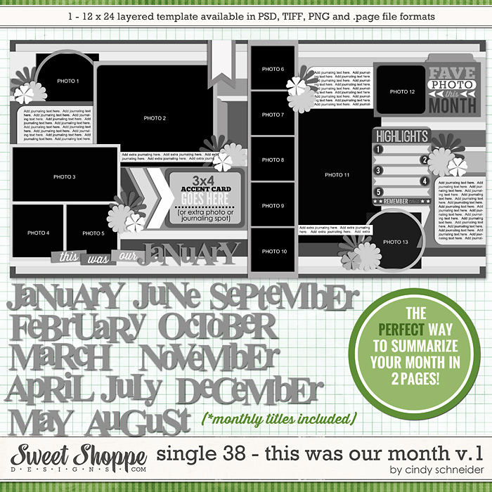 Cindy's Layered Templates - Single 38: This Was Our Month V1 by Cindy Schneider