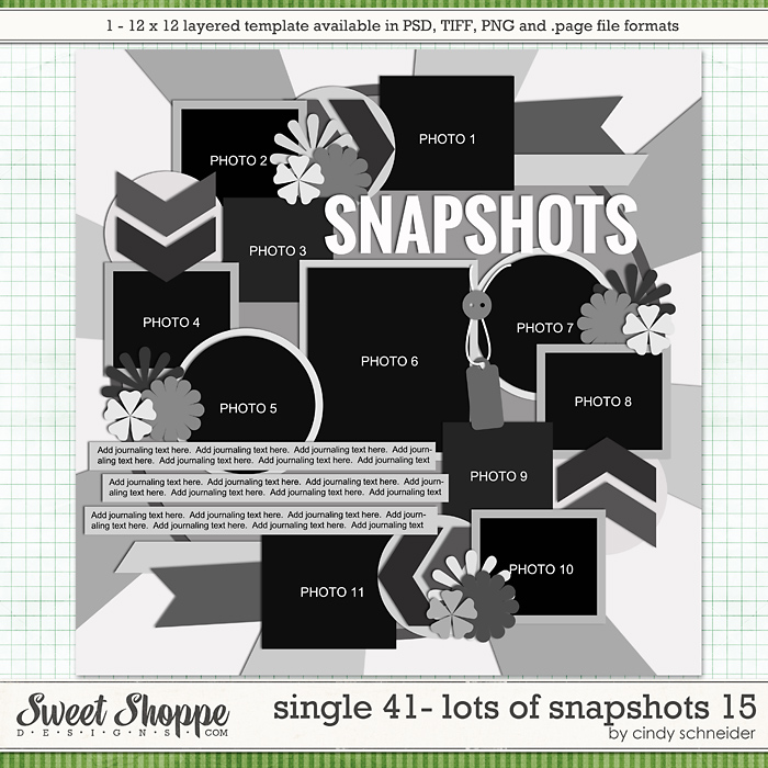 Cindy's Layered Templates - Single 41: Lots of Snapshots 15 by Cindy Schneider
