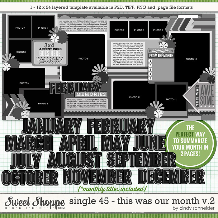 Cindy's Layered Templates - Single 45: This Was Our Month V2 by Cindy Schneider