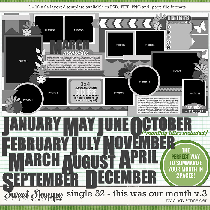 Cindy's Layered Templates - Single 52: This Was Our Month V3 by Cindy Schneider