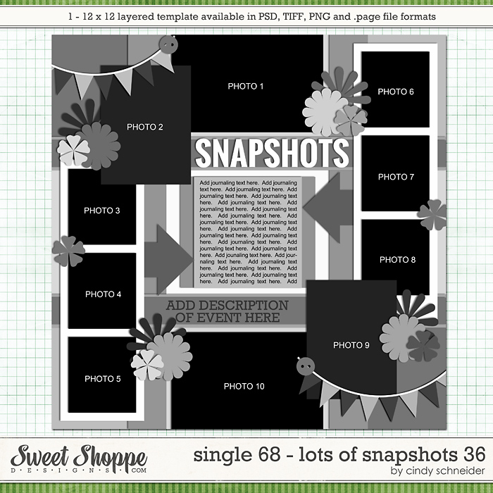Cindy's Layered Templates - Single 68: Lots of Snapshots 36 by Cindy Schneider