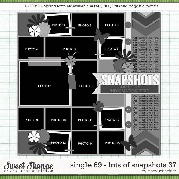 Cindy's Layered Templates - Single 69: Lots of Snapshots 37 by Cindy Schneider