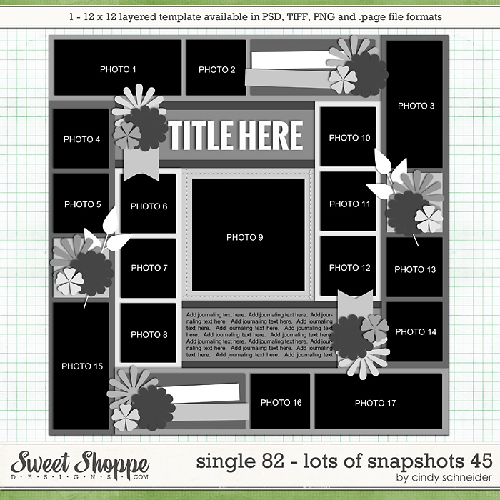 Cindy's Layered Templates - Single 82: Lots of Snapshots 45 by Cindy Schneider