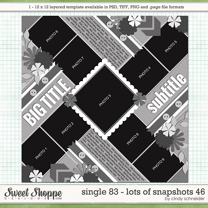 Cindy's Layered Templates - Single 83: Lots of Snapshots 46 by Cindy Schneider