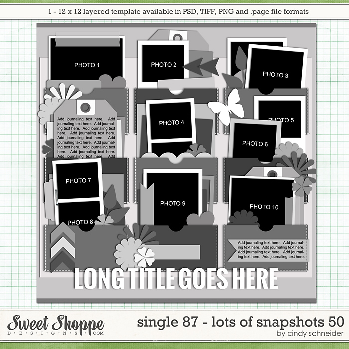 Cindy's Layered Templates - Single 87: Lots of Snapshots 50 by Cindy Schneider