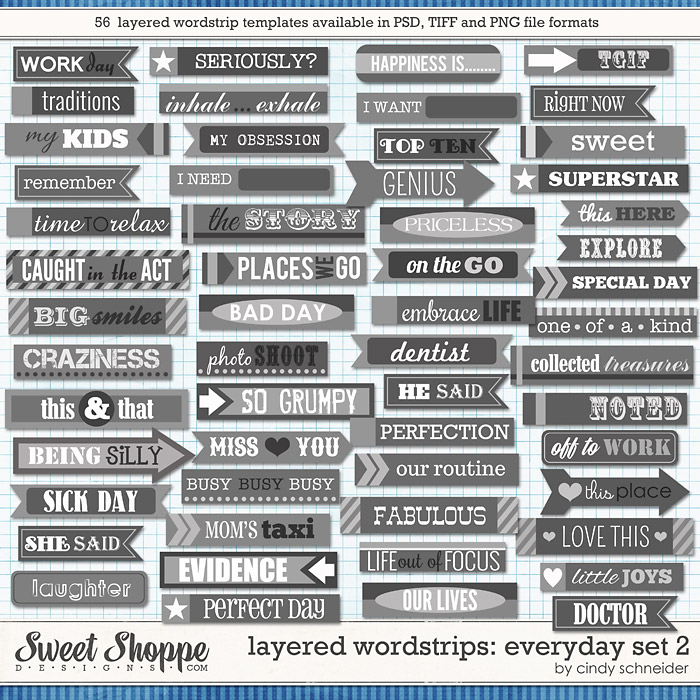 Cindy's Layered Wordstrips - Everyday Set 2 by Cindy Schneider