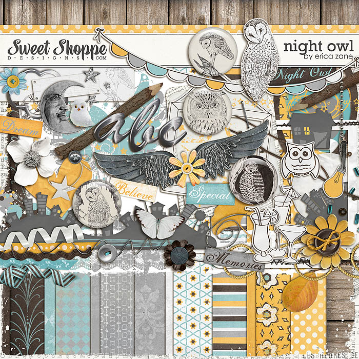 Night Owl by Erica Zane