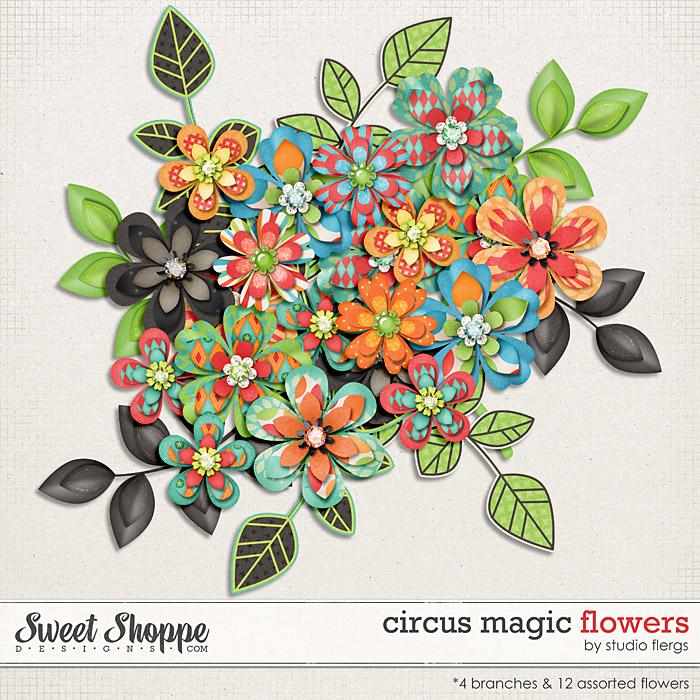 Circus Magic: FLOWERS by Studio Flergs