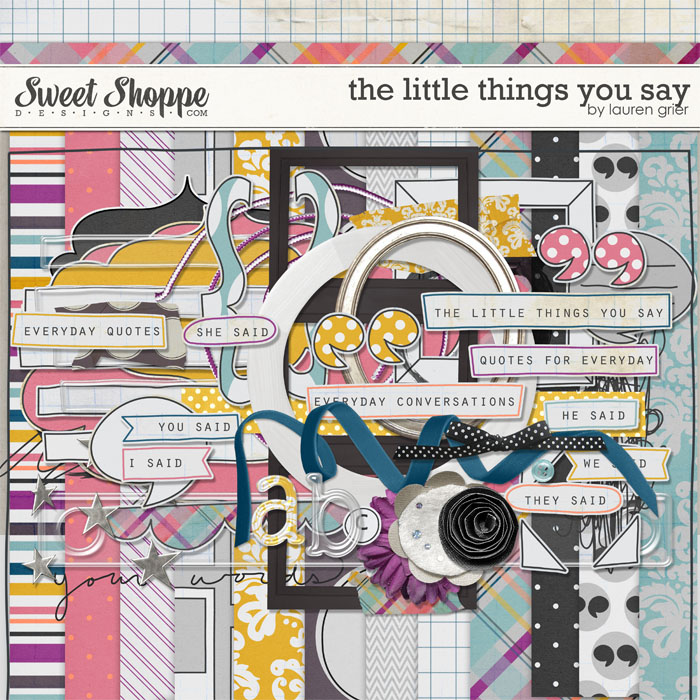 The Little Things You Say by Lauren Grier