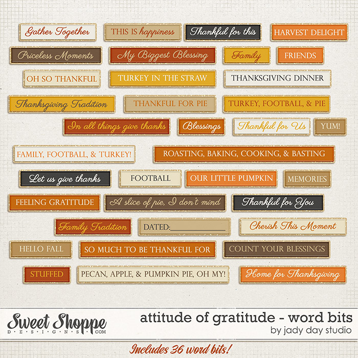 Attitude of Gratitude - Word Bits by Jady Day Studio