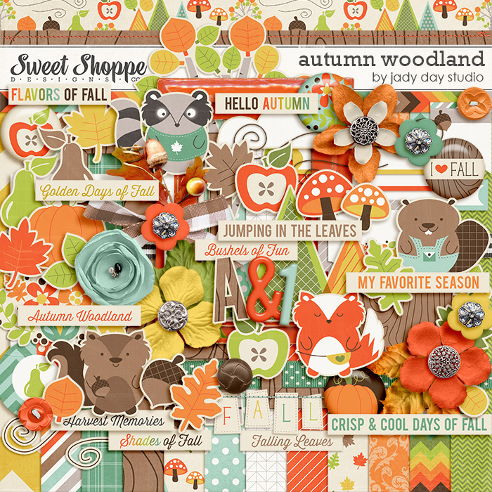 Autumn Woodland by Jady Day Studio