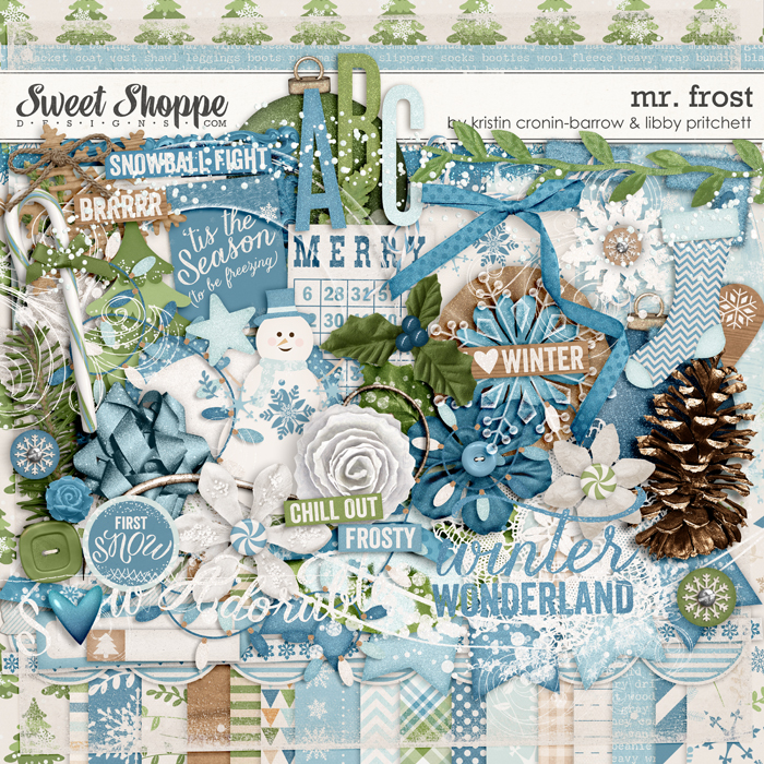 Mr. Frost by Kristin Cronin-Barrow & Libby Pritchett