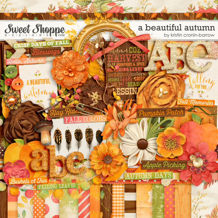 A Beautiful Autumn by Kristin Cronin-Barrow