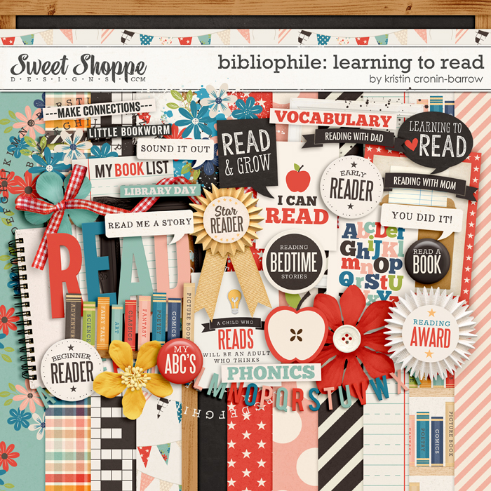 Bibliophile: Learning to Read by Kristin Cronin-Barrow