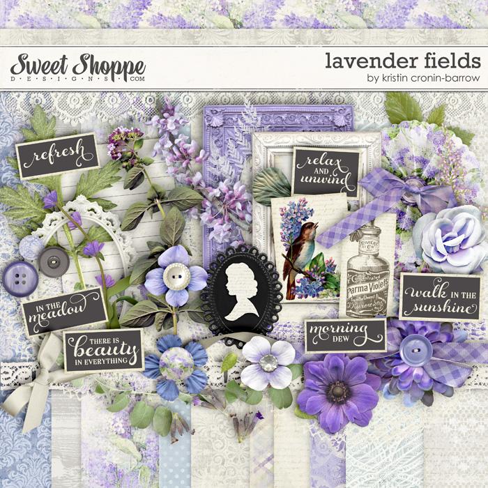 Lavender Fields by Kristin Cronin-Barrow