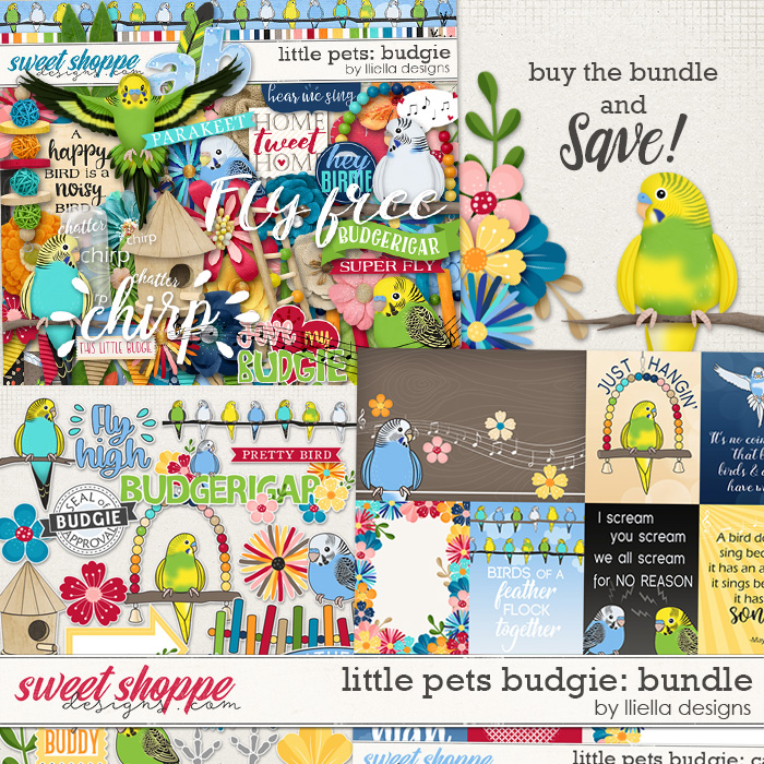 Little Pets Budgie Bundle by lliella designs