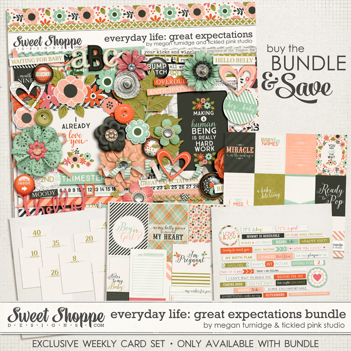Everyday Life: Great Expectations Bundle by Megan Turnidge & Tickled Pink Studio