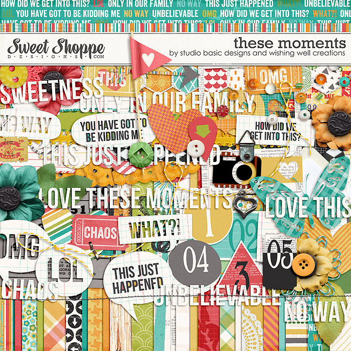 These Moments Kit by Studio Basic and Wishing Well Creations