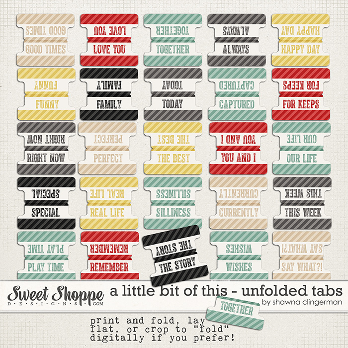 A Little Bit of This - Unfolded Tabs by Shawna Clingerman