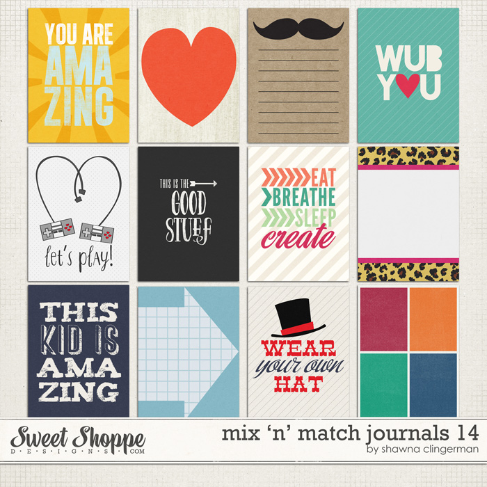 Mix 'n' Match Journals 14 by Shawna Clingerman