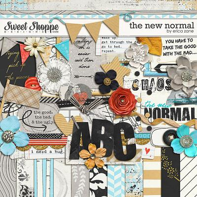 The New Normal by Erica Zane