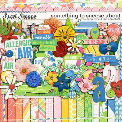 Something to Sneeze About by Libby Pritchett & Erica Zane