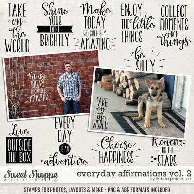 Everyday Affirmations Vol. 2 by Tickled Pink Studio