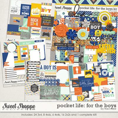 Pocket Life: For The Boys by Traci Reed