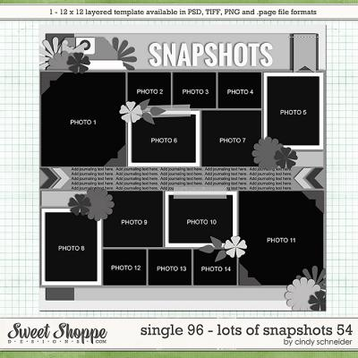 Cindy's Layered Templates - Single 96: Lots of Snapshots 54 by Cindy Schneider