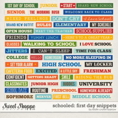Schooled: First Day Snippets by Kristin Cronin-Barorw